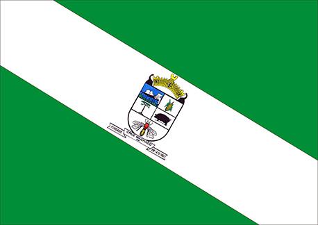 Bandeira de Cruz Machado