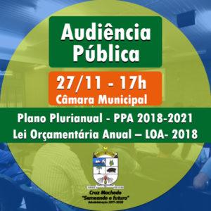 audiencia-publica-27-11